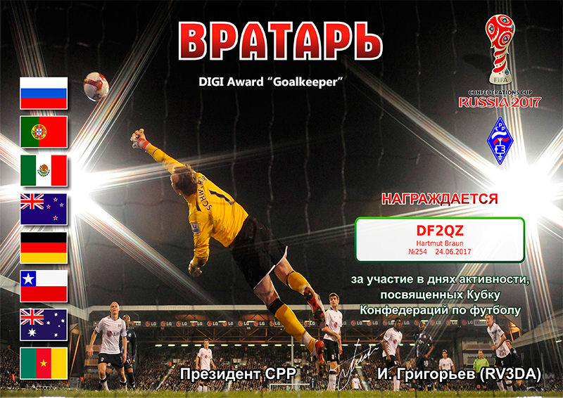Award-DIGI Goalkeeper 254